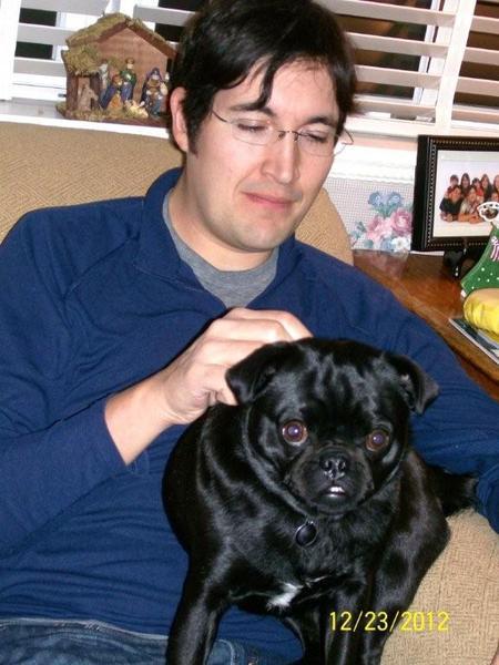 Pug named 'Suki' - PugRodeo.com